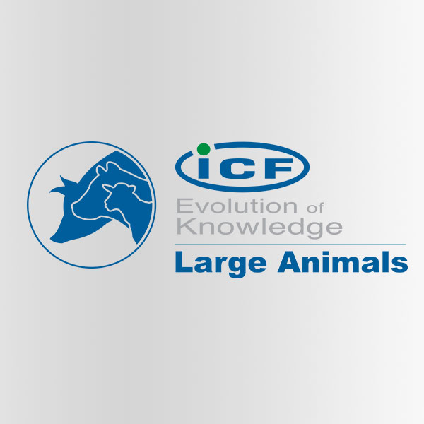 icf-large-animals-big-square